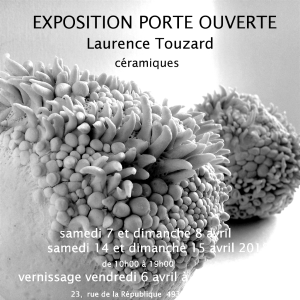 visuel invitation vernissage exposition comp